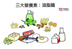 脂質是什麼?脂肪酸是什麼?可以完全不要攝取油脂嗎?營養師用一篇文章帶你了解!