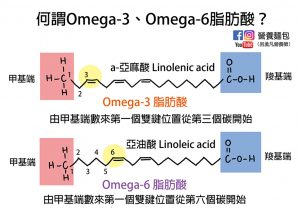 飽和脂肪酸、不飽和脂肪酸、Omega-3脂肪酸、Omega-6脂肪酸、反式脂肪酸是什麼?營養師畫圖解釋給你看!