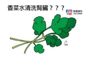 你喜歡吃香菜嗎?聽說香菜水可以清洗腎臟?真的還假的?讓營養師來替你解答!