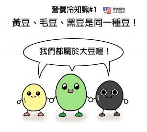 營養冷知識#1:黃豆、毛豆、黑豆是同一種豆!看看營養師怎麼說?