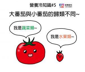 營養冷知識#5:大番茄是蔬菜、小番茄是水果,為什麼呢?營養師分析給你看。